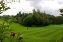 Royal Burgess golf course 2