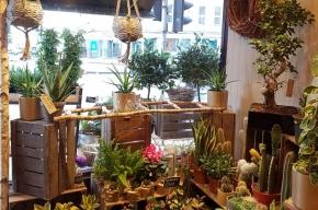 Garlands shop front - Valentine's Day in Edinburgh