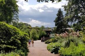 Royal-Botanic-Garden-Edinburgh-path-3