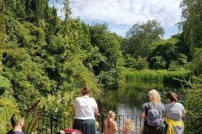 Royal-Botanic-Garden-Edinburgh-pond