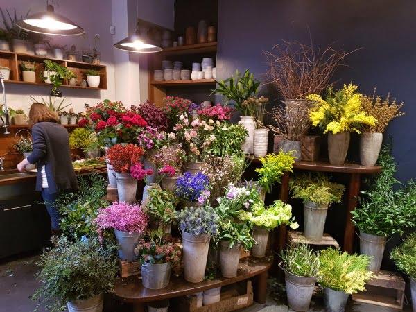 Narcissus Flower Shop - Valentine's Day in Edinburgh